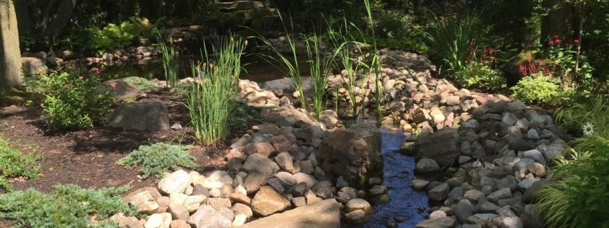 Image de Conception d'un jardin d'eau