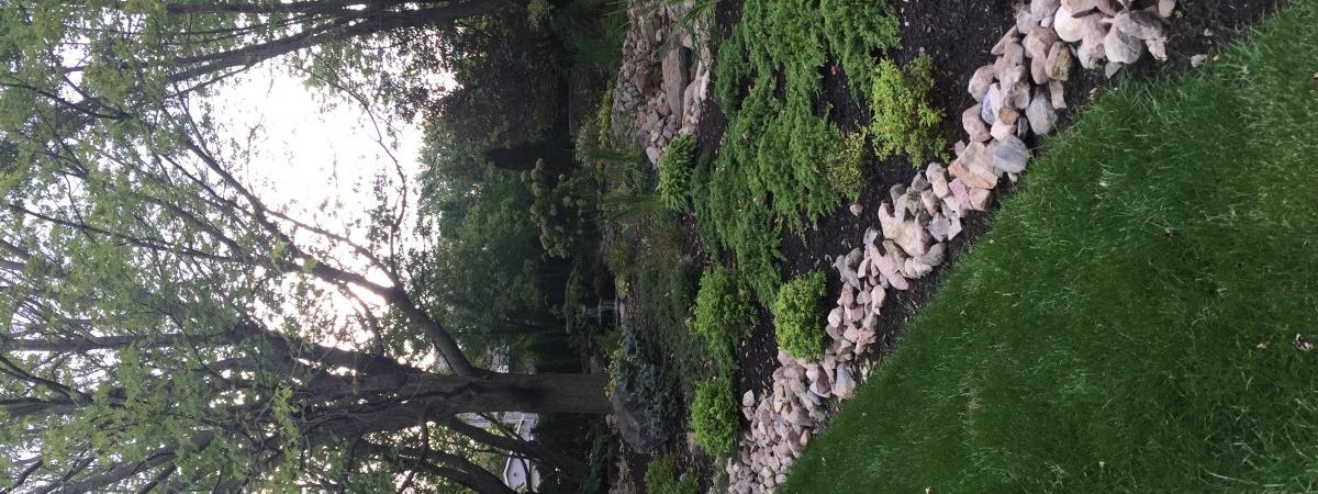 Image de jardin d'eau